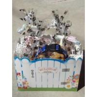 China Welcome Home Dog Gift Basket - Shortys Gourmet Treats on sale