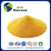 Best Standard Herb Extract Coenzyme Q10 wholesale