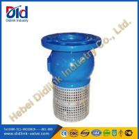 China Ductile iron/Cast iron suction foot valve screen, 6 inch foot valve on sale