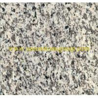 Best China Granite Tiger Skin White wholesale