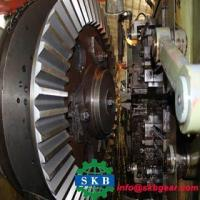 Best Petrol Tricycle Spiral Shape Bevel Gear wholesale