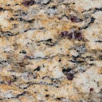 China Giallo Santa Cecilia Granite on sale
