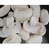 Buy cheap FD Button Mushroom Slice from wholesalers