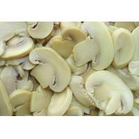 Buy cheap Canned Button Mushroom from wholesalers