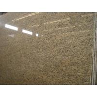 Best Granite Prefab Countertops Sunset Venetian Brazil Santa Cecilia Gold Granite wholesale