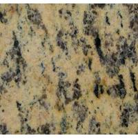 Best Granite High Quality Tiger Skin Yellow 24x24 Granite Tile Price wholesale
