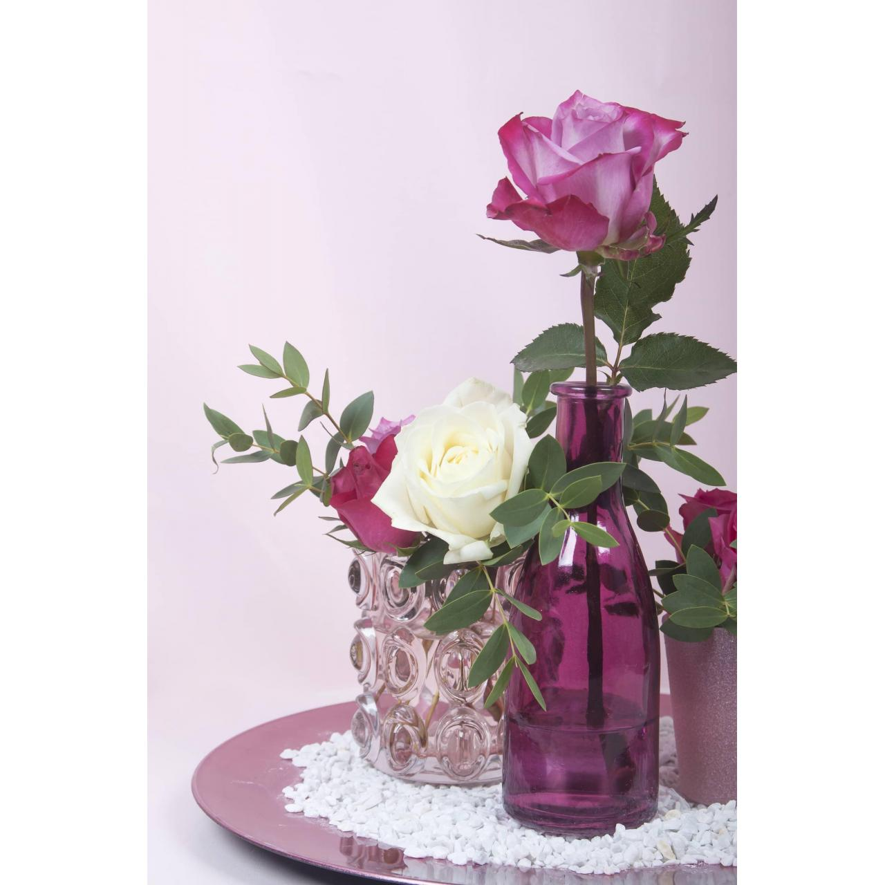 Buy cheap Rose from wholesalers