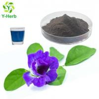 Cheap Butterfly Pea Powder for sale
