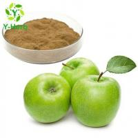 Cheap Unripe Green Apple Extract for sale
