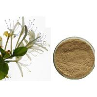 Buy cheap Honeysuckle Extract Chlorogenic Acid from wholesalers